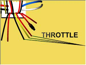 Throttle / Accelerator