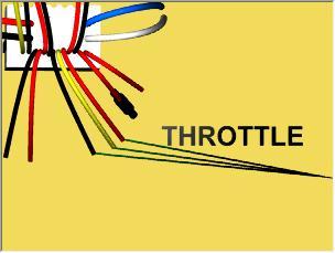 Throttle / Accelerator
