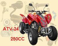 ATV-24